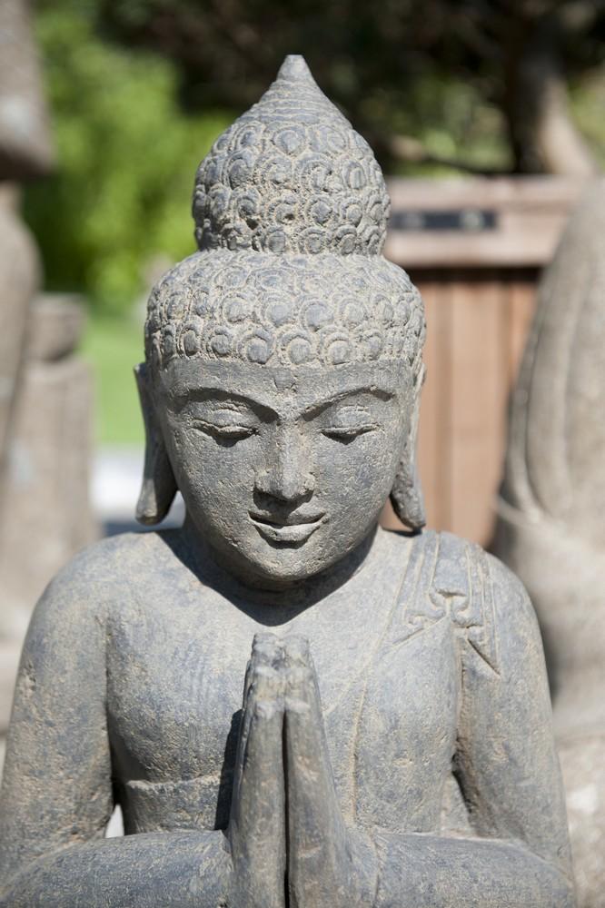 Sommeraktion für Buddhafreunde