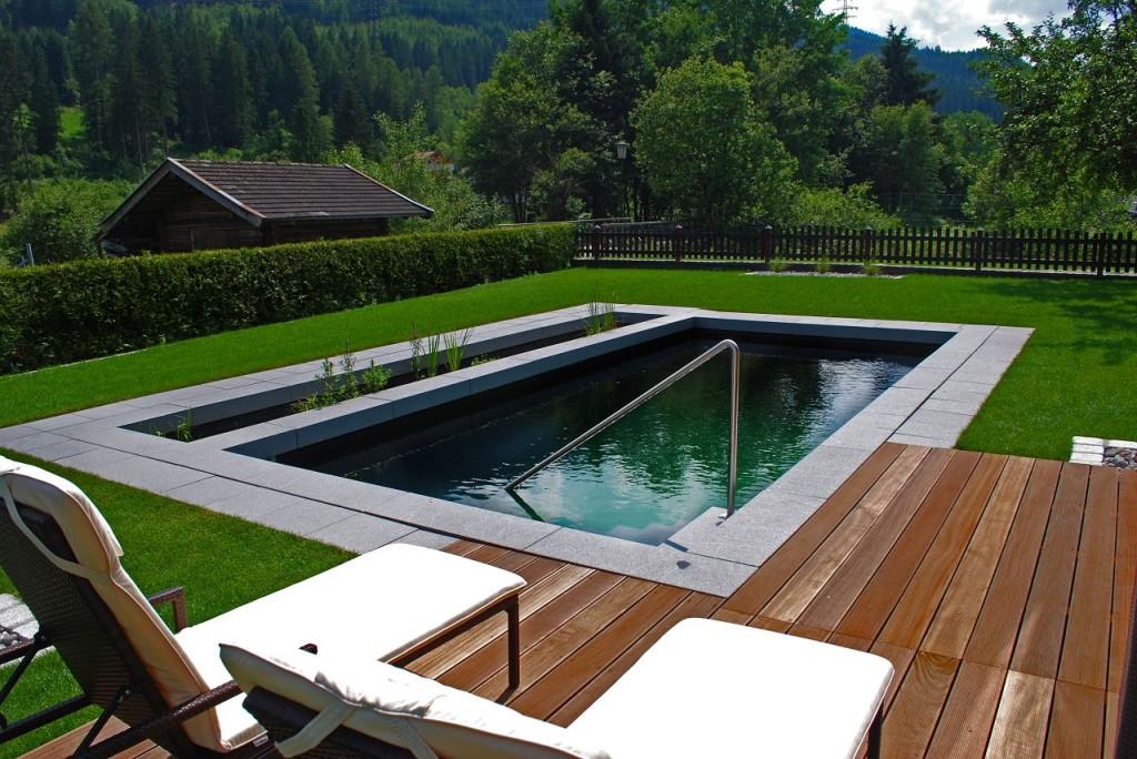Bio pool und schwimmteich ein erlebnis der ganz for Bio piscina